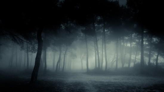 Голоса в тумане страшная история