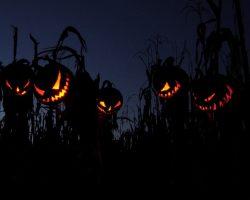 фото и картинки на Хэллоуин (15)