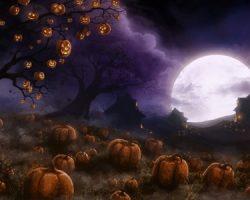 фото и картинки на Хэллоуин (40)