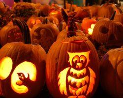 тыква на Хэллоуин фото (25)