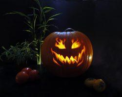 тыква на Хэллоуин фото (28)