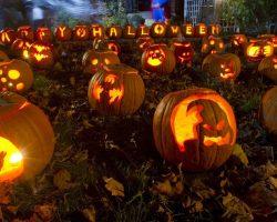 тыква на Хэллоуин фото (3)