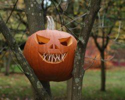 тыква на Хэллоуин фото (45)