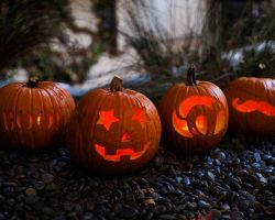 тыква на Хэллоуин фото (62)