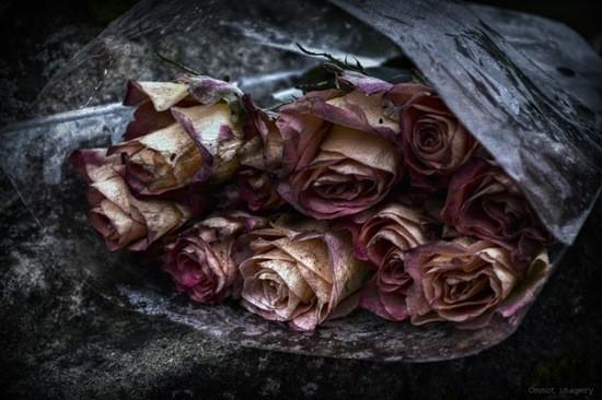 Цветы для мертвых фото