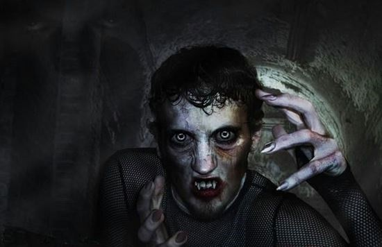 Арнольд Паоле вампир фото