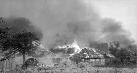 горят дома фото